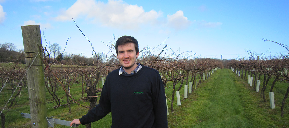 Richard, French Work Experience Student at Biddenden Vineyards